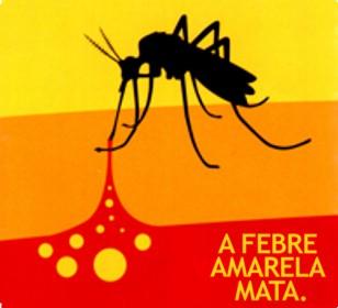Resultado de imagem para foto de febre amarela