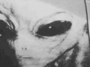 alien1h Solopsi Rai